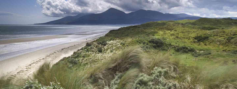 Murlough Nature Trail  (© NTI/Joe Cornish)