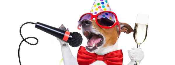 Dog singing festive songs (Dreamstime)