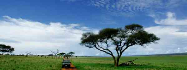 Safari in southern Tanzania (dreamstime_1158661)