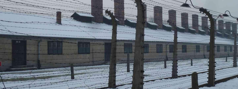 Auschwitz-Birkenau (Helen Moat)