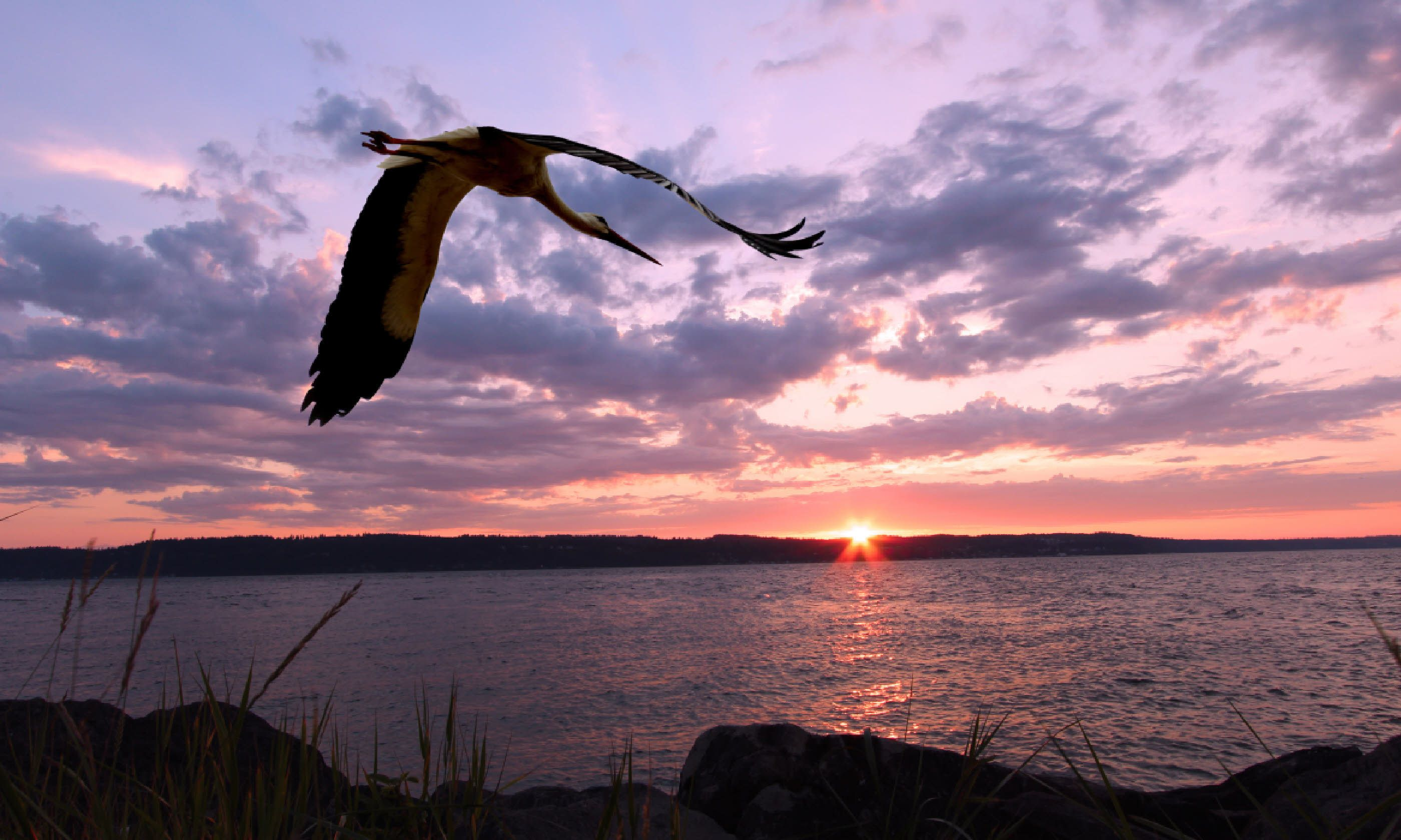 Sunset over Whidbey Island (Shutterstock)