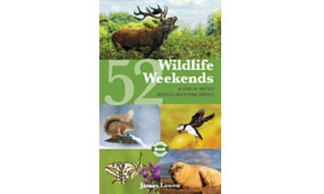 Wildlife weekends