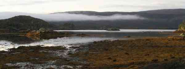Otter country on the Ardnamurchan Peninsula (JD)
