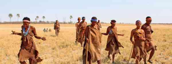 Xushe Xwil leads a group of Ju'/hoansi tribe women across the grasslands around the Makgadikgadi Pans (Graeme Green)