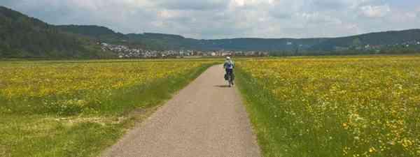 Riding through the flowers (Helen Moat)