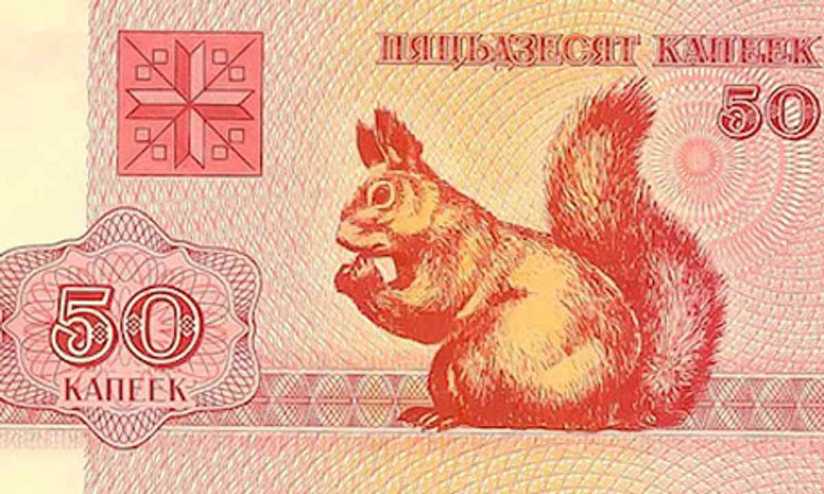Squirrel money