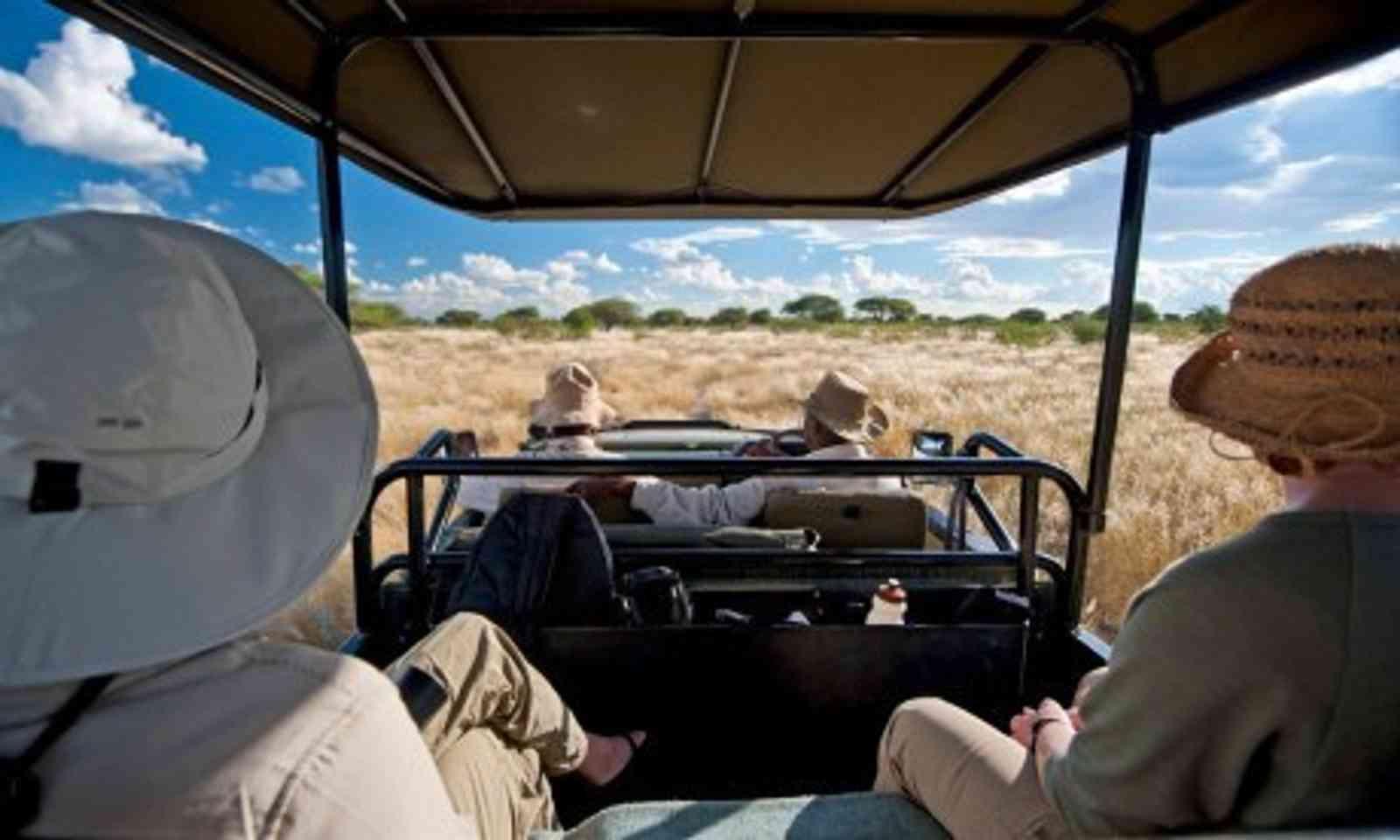 Inside a safari van (Lyn Hughes)