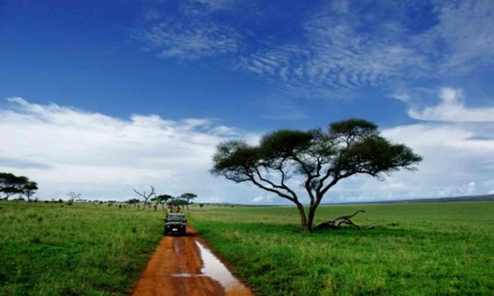 Southern Tanzania (Dreamstime)