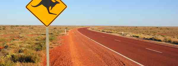 Lonely road in Australia (Shutterstock.com)