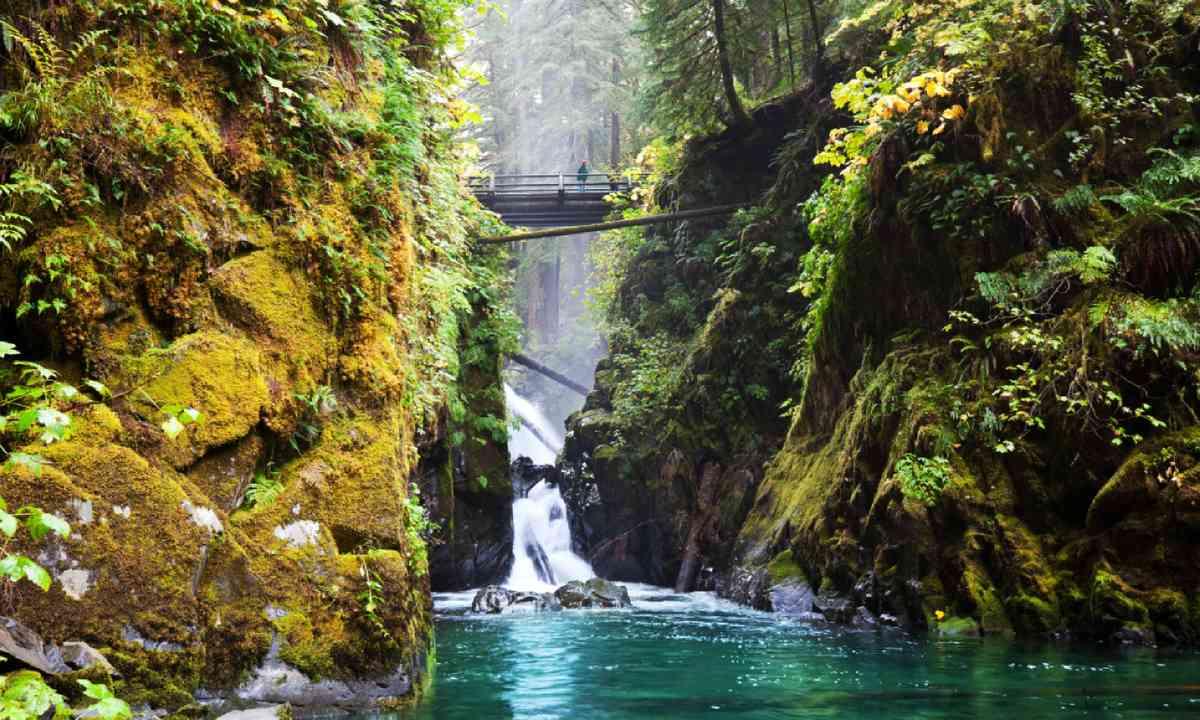 Sol Duc waterfall (Shutterstock)