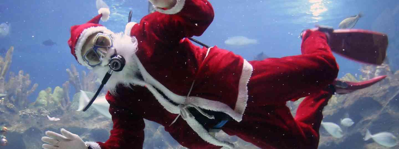 Snorkelling Santa (Dreamstime)