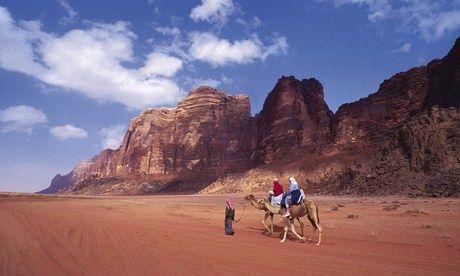 Camel in the desert (Wanderlust)