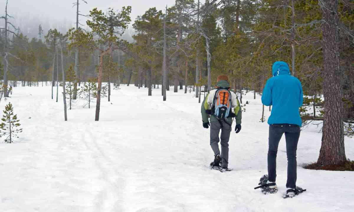 Snowshoing in Sweden (Shutterstock)