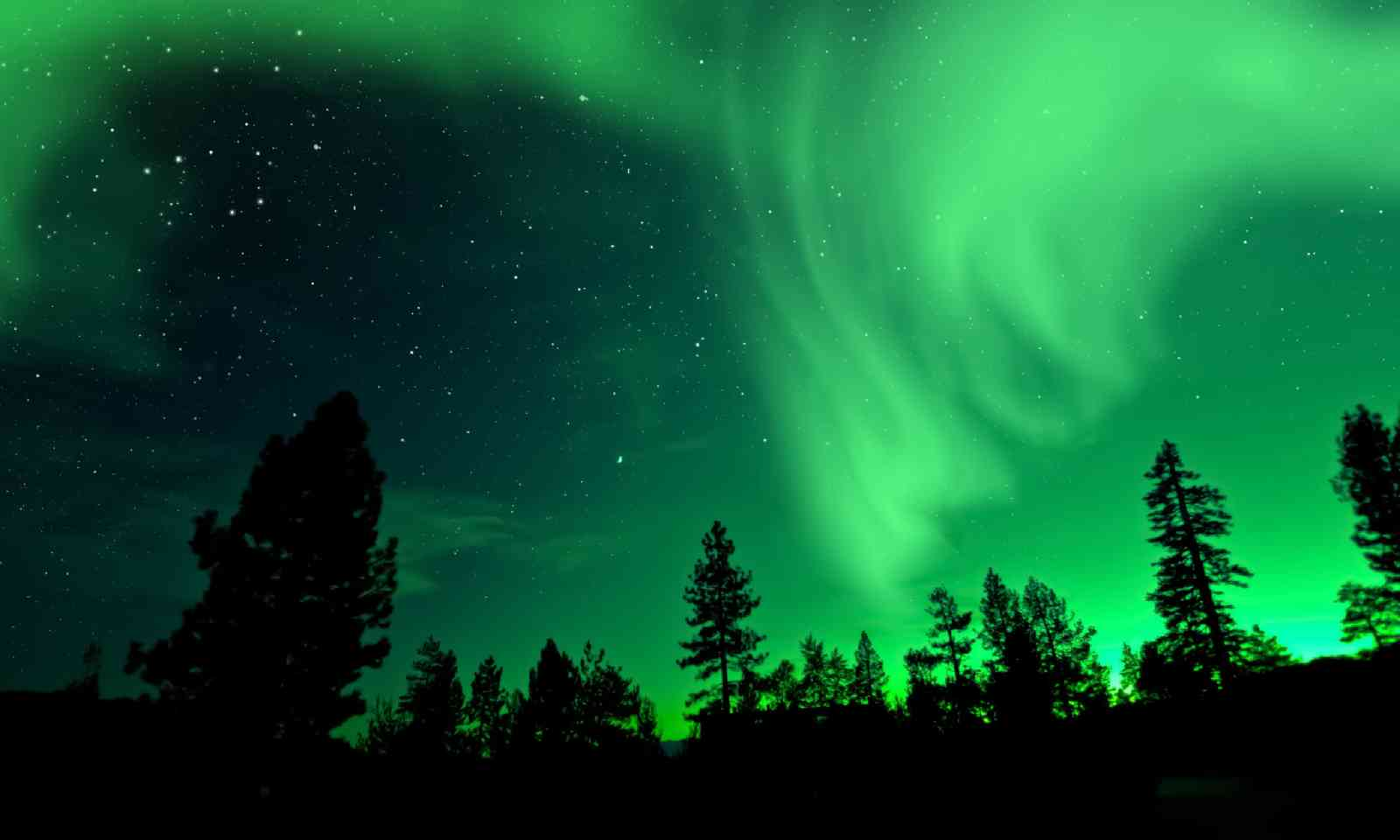 Aurora Borealis Northern Lights (Shutterstock)