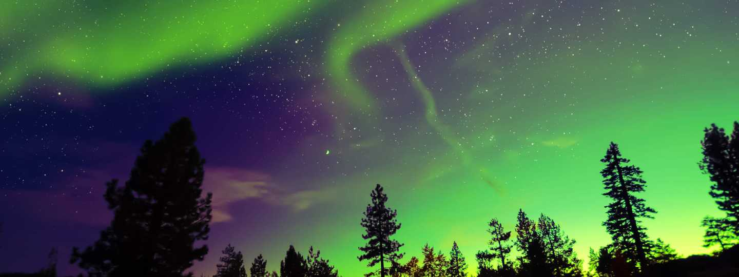 Northern Lights Aurora Borealis in the night sky (Shutterstock)
