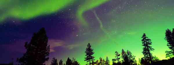 Northern lights aurora borealis in the night sky. (Shutterstock)