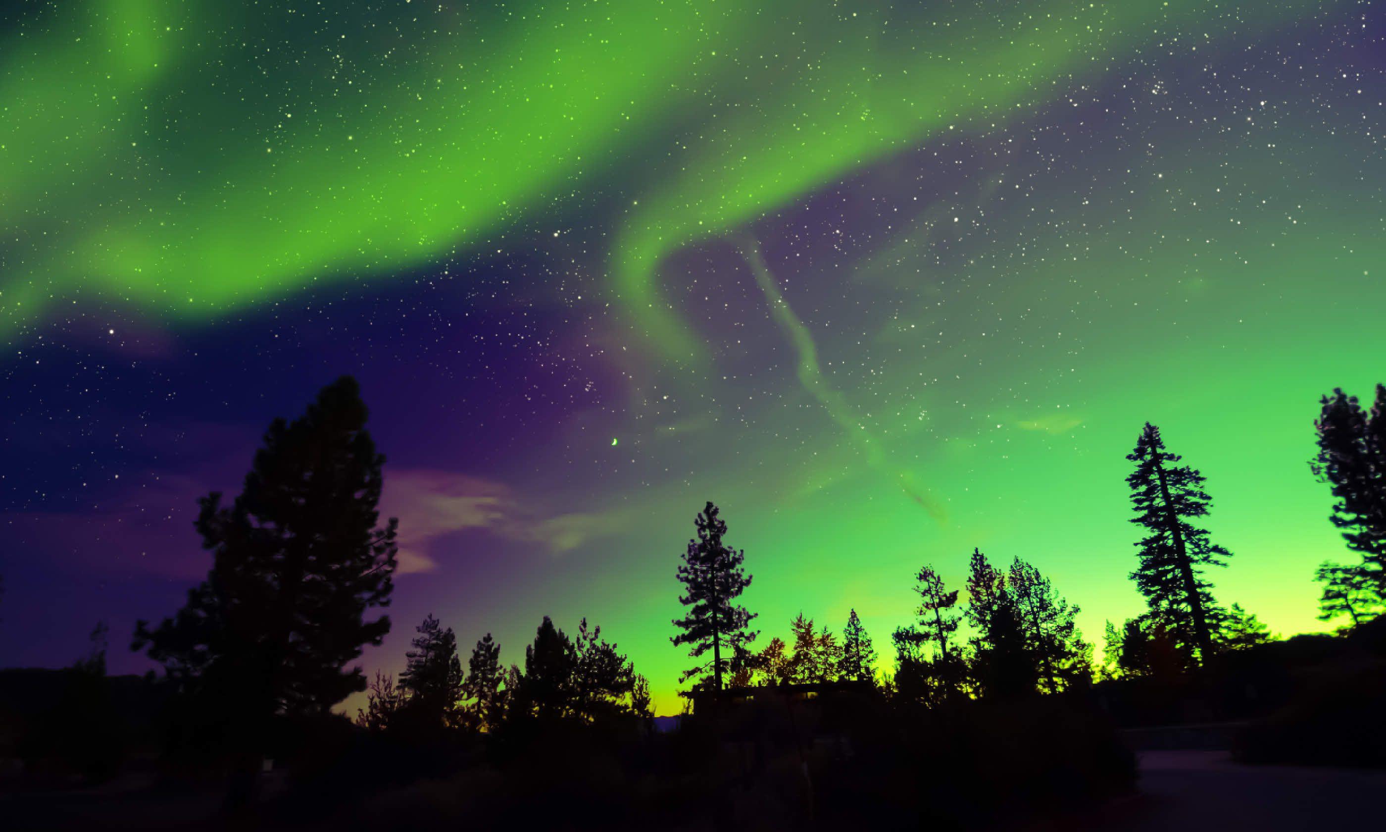 Northern Lights Aurora Borealis In The Night Sky (Shutterstock)