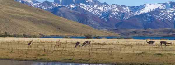 Patagonia (Pura-Aventura)