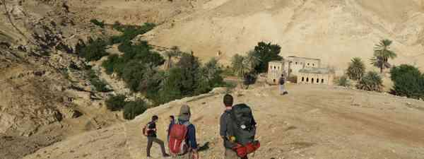 West Bank oasis  (Leon McCarron)