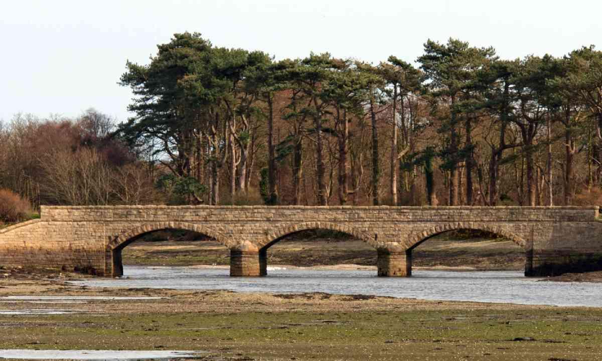 Dundrum Bay, Co Down, Northern Ireland (Shutterstock)