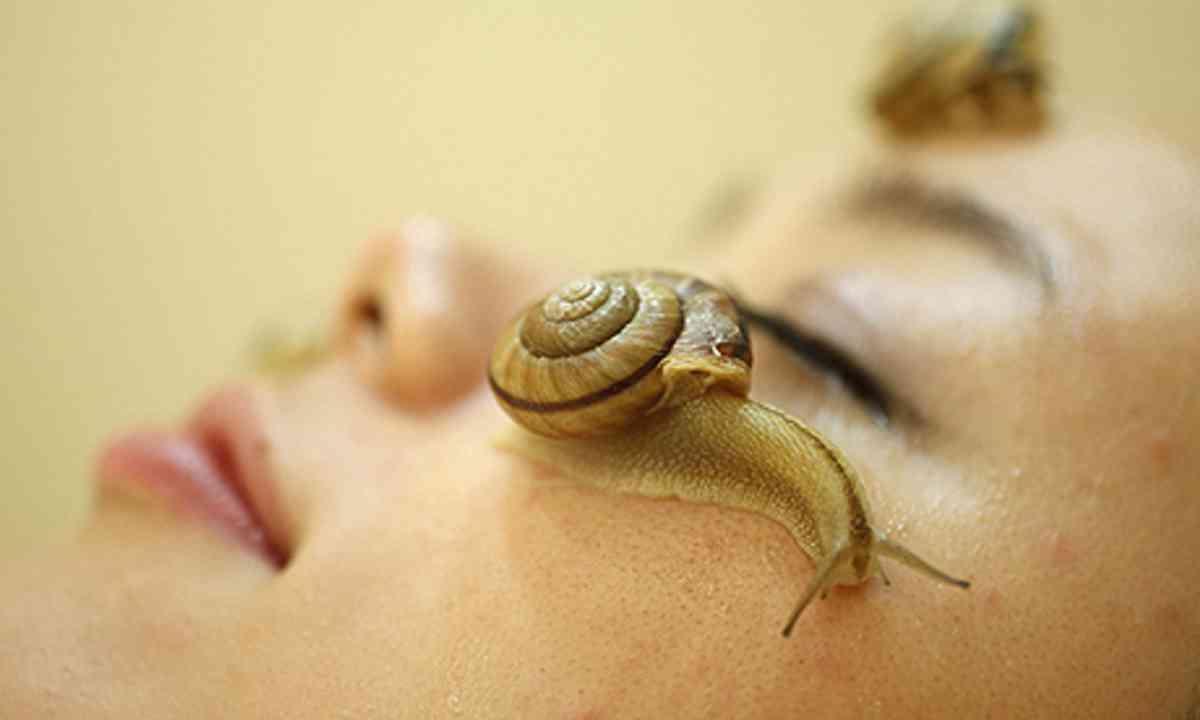 Snail massage (Clinical-salon Ci:z.labo)