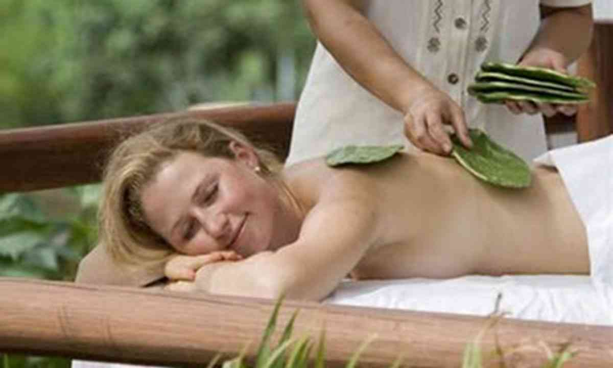 Cactus Massage 9Four Seasons)