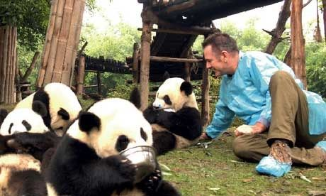 Pandas with Nigel Marvin