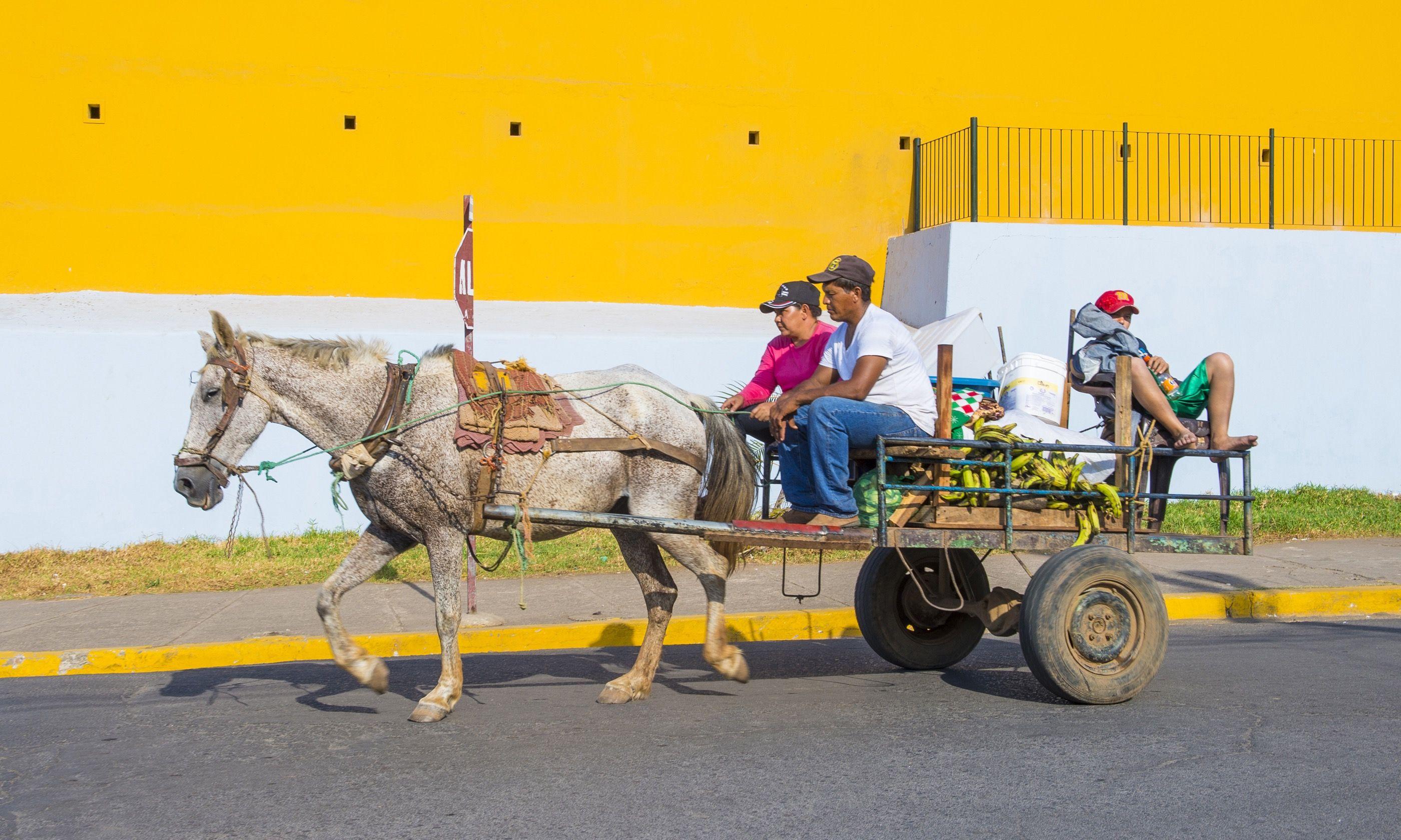 Horse-drawn wagon in Granada (Dreamstime)