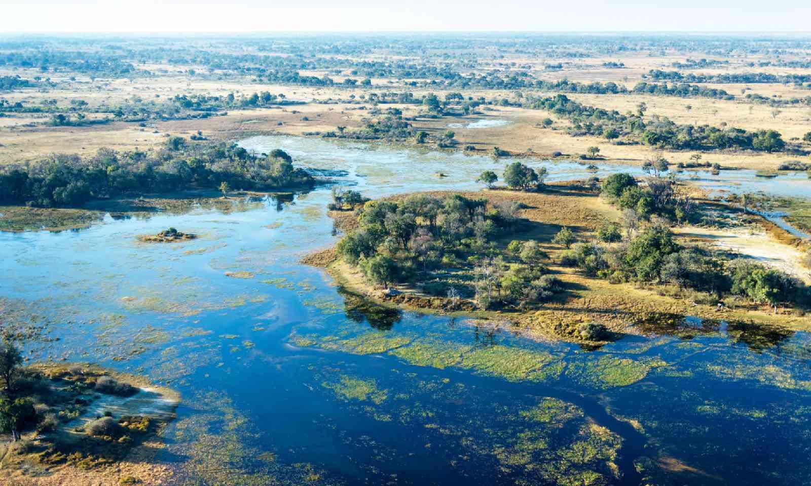 Okavango Delta aerial view (Shutterstock)