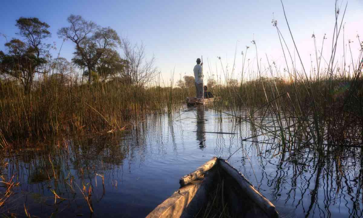 Boat trip in Okavango Delta (Shutterstock)