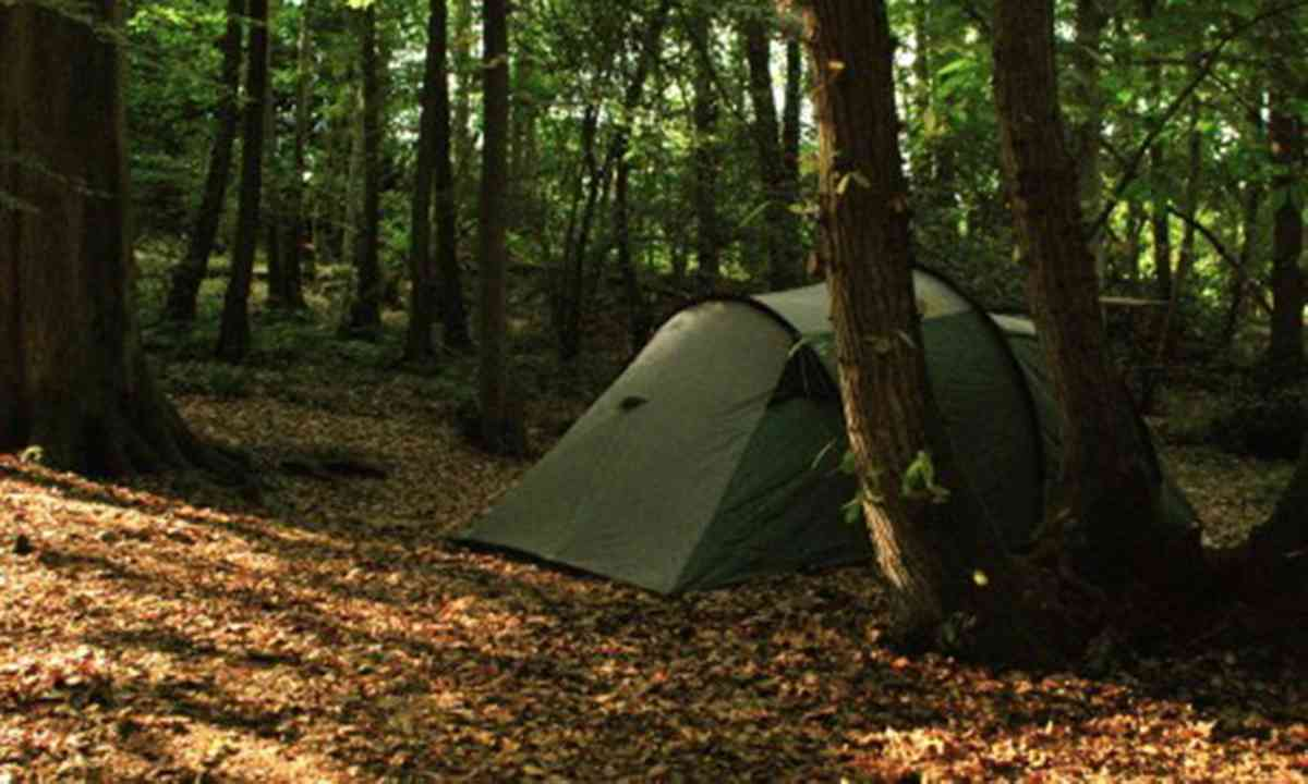 Tent in English wood (Cool Camping)