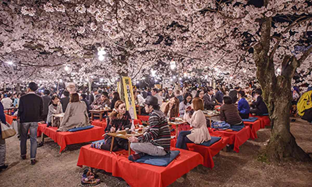Cherry Blossom party (Shutterstock.com)