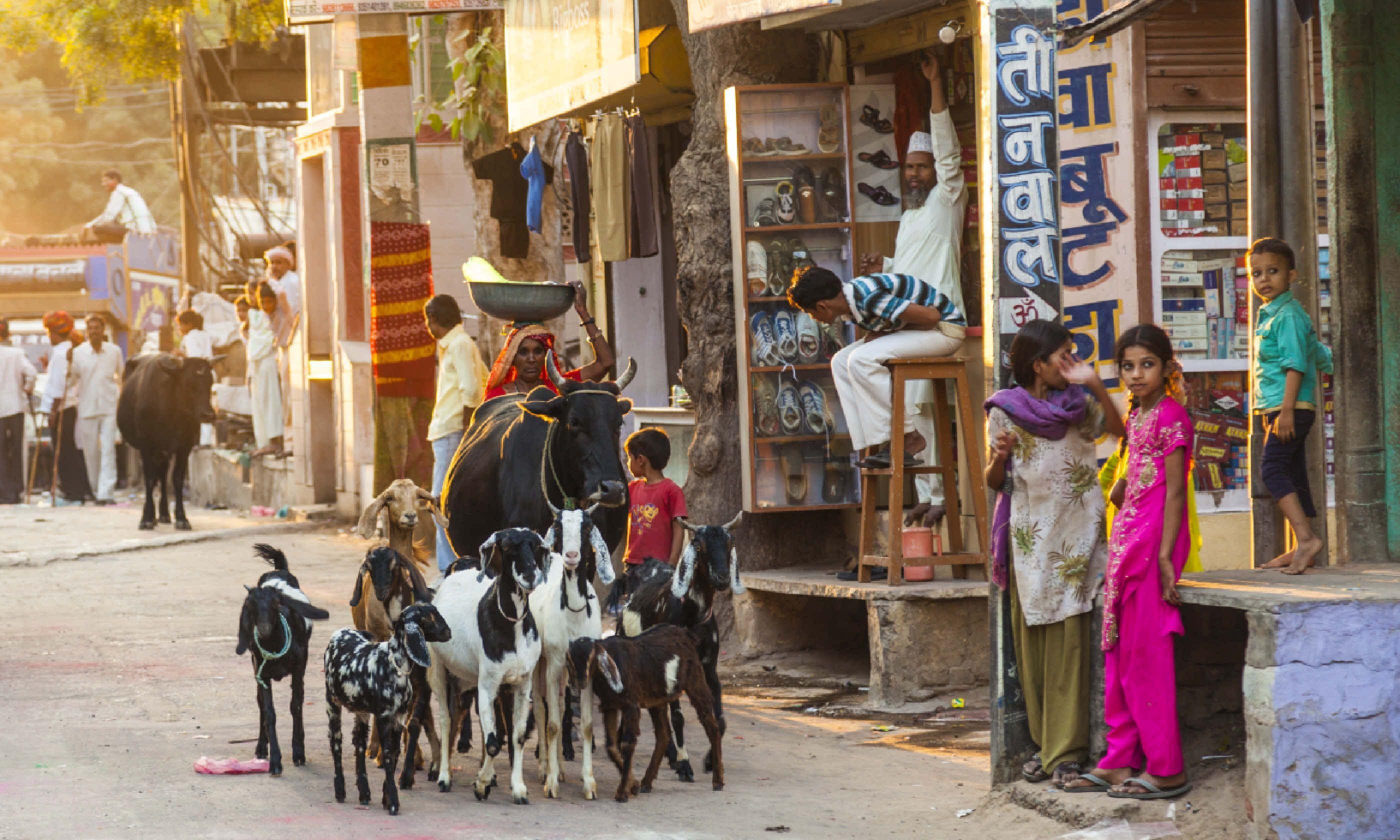 Jodhpur bazaar (Shutterstock)