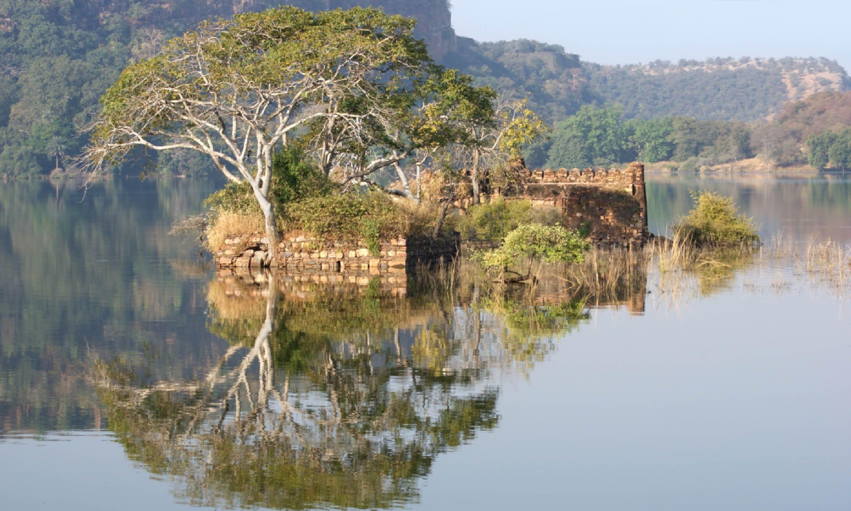 Ranthambore National Park (Shutterstock)