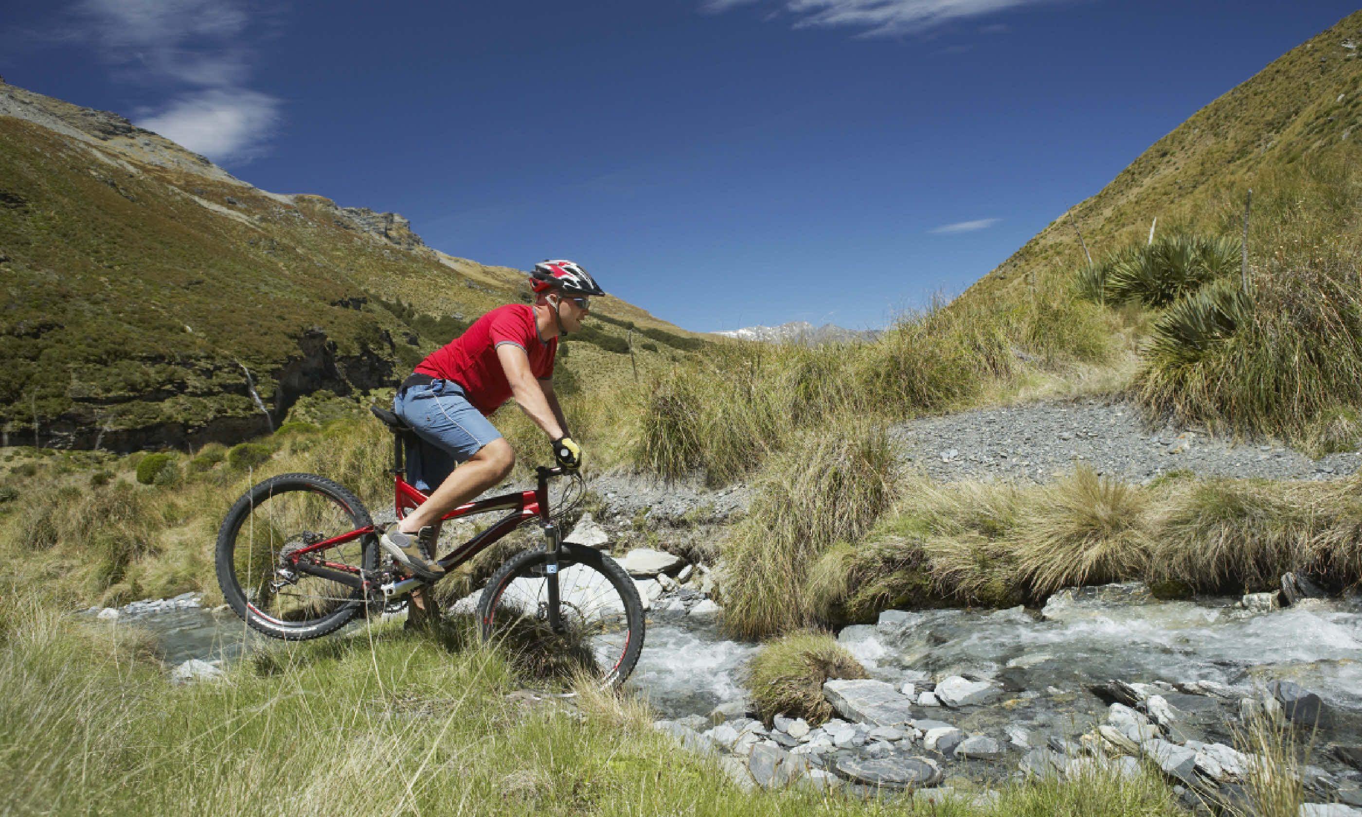 Cyclist, New Zealand (Shutterstock)