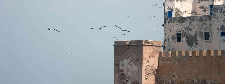 Essaouira, Morocco (Simon Chubb)