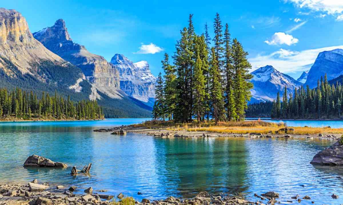 Jasper National Park, Alberta (Shutterstock)