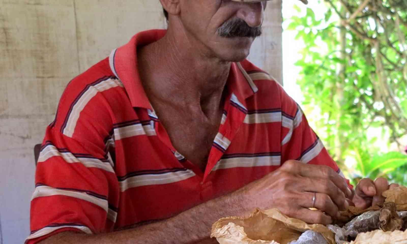 Farmer rolling cigars (Dave and Carmen Allan-Petale)