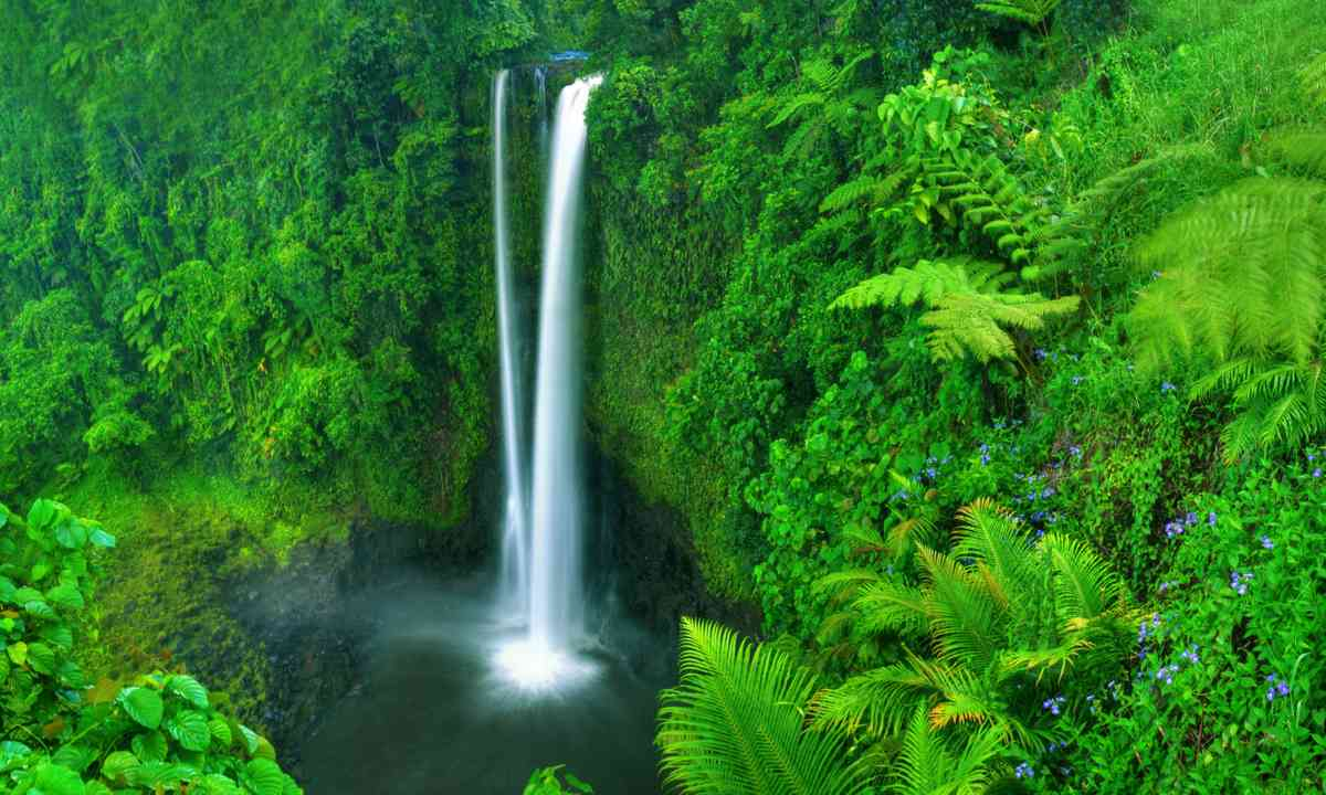 Papapapaitai Falls, Samoa (Dreamstime)