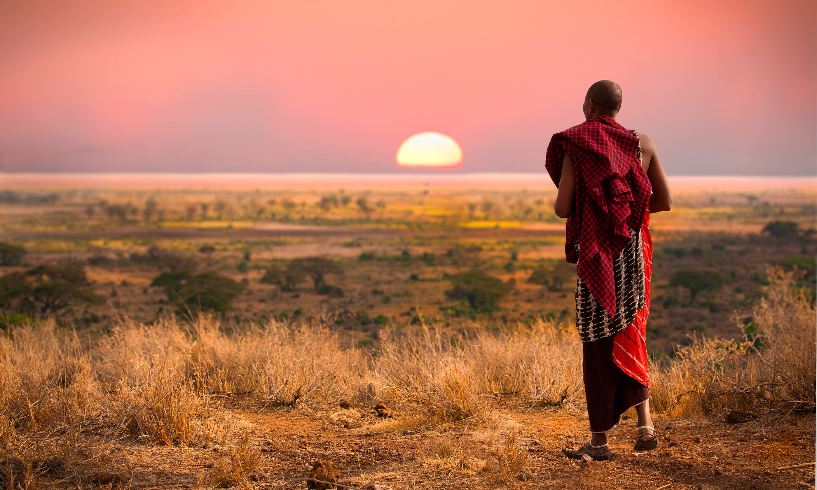 Maasai man looking across the Serengeti (Shutterstock)