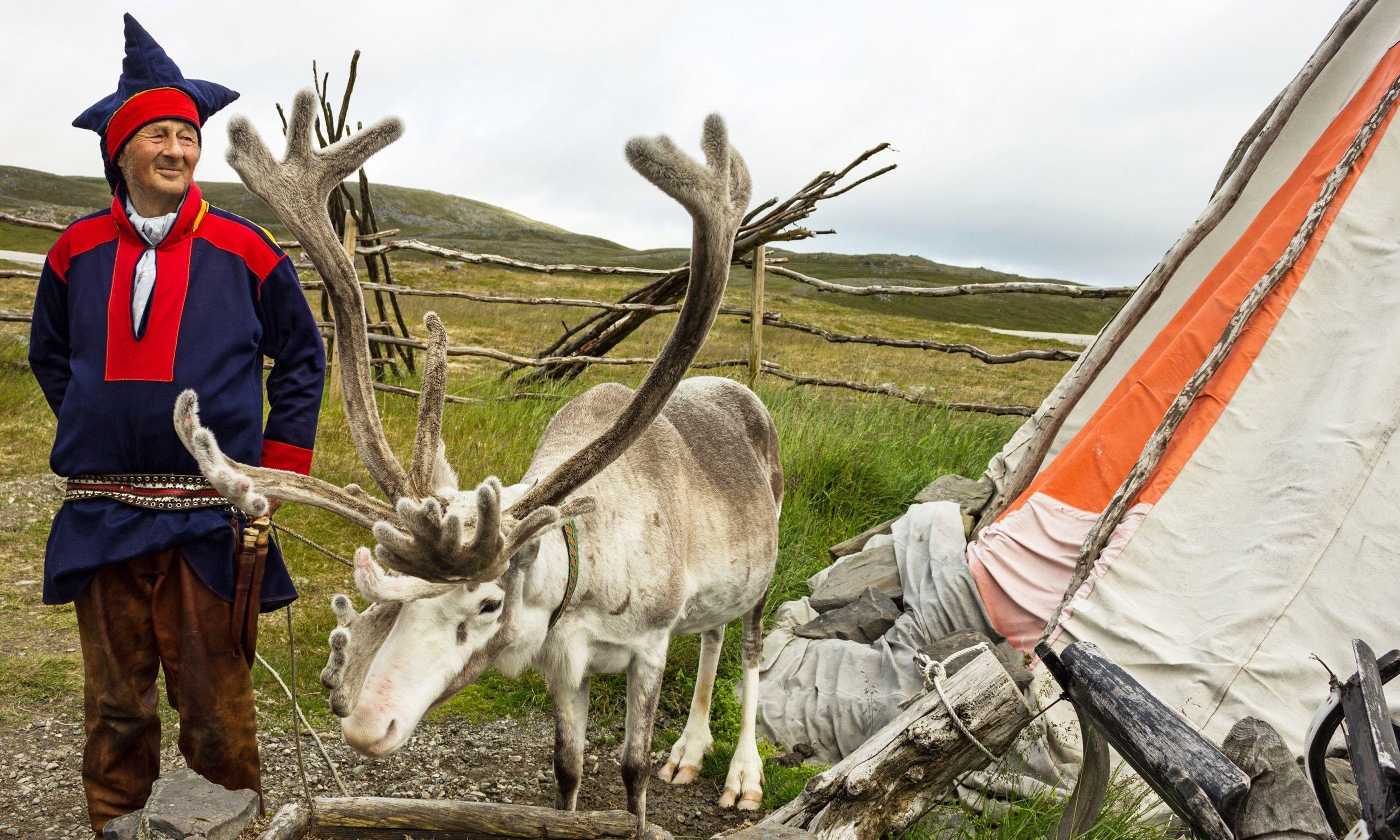 A Sami reindeer herder (Dreamstime)