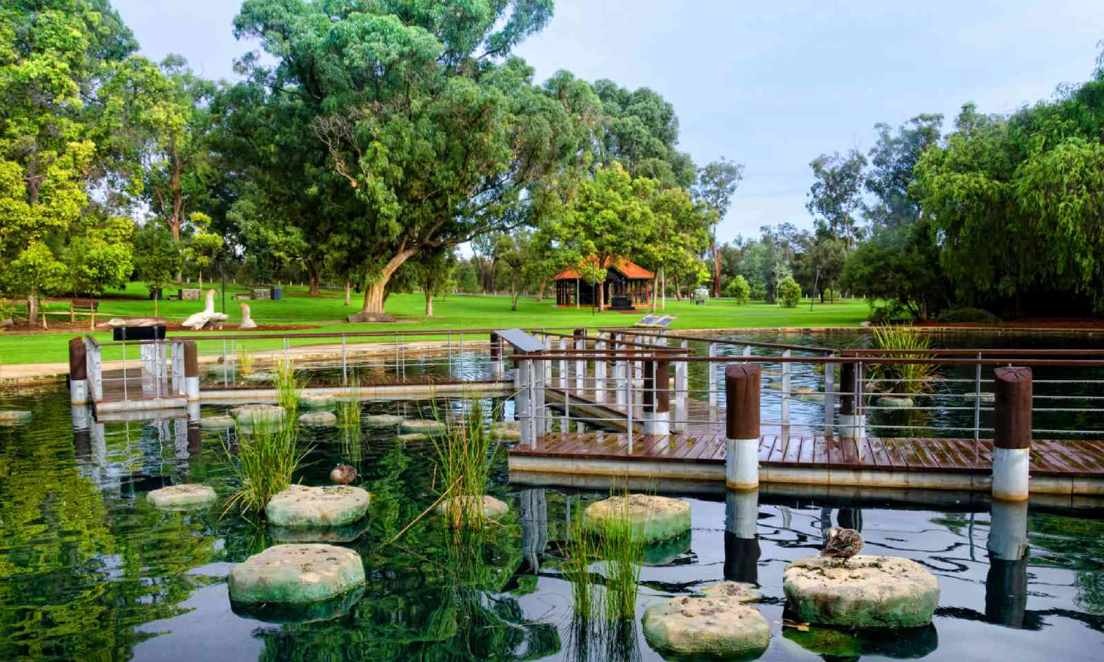 Kings Park, Perth (Shutterstock)