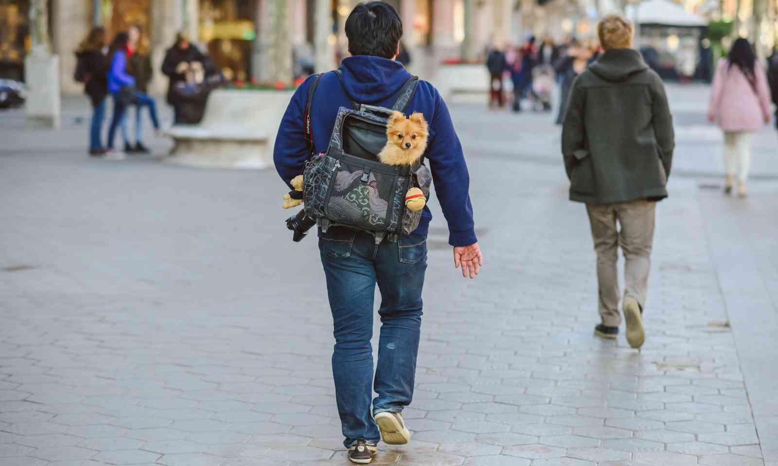 Walking the streets of Barcelona (Dreamstime)