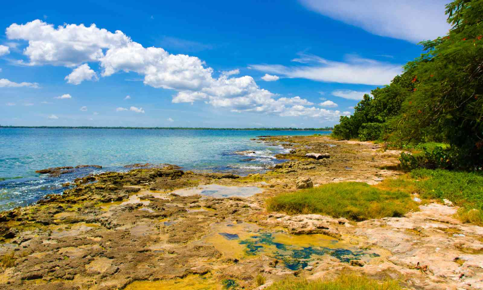 The Bay of Pigs (Dreamstime)
