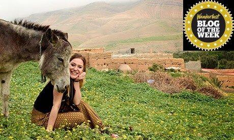 Berber donkey (Sara Trajanova)