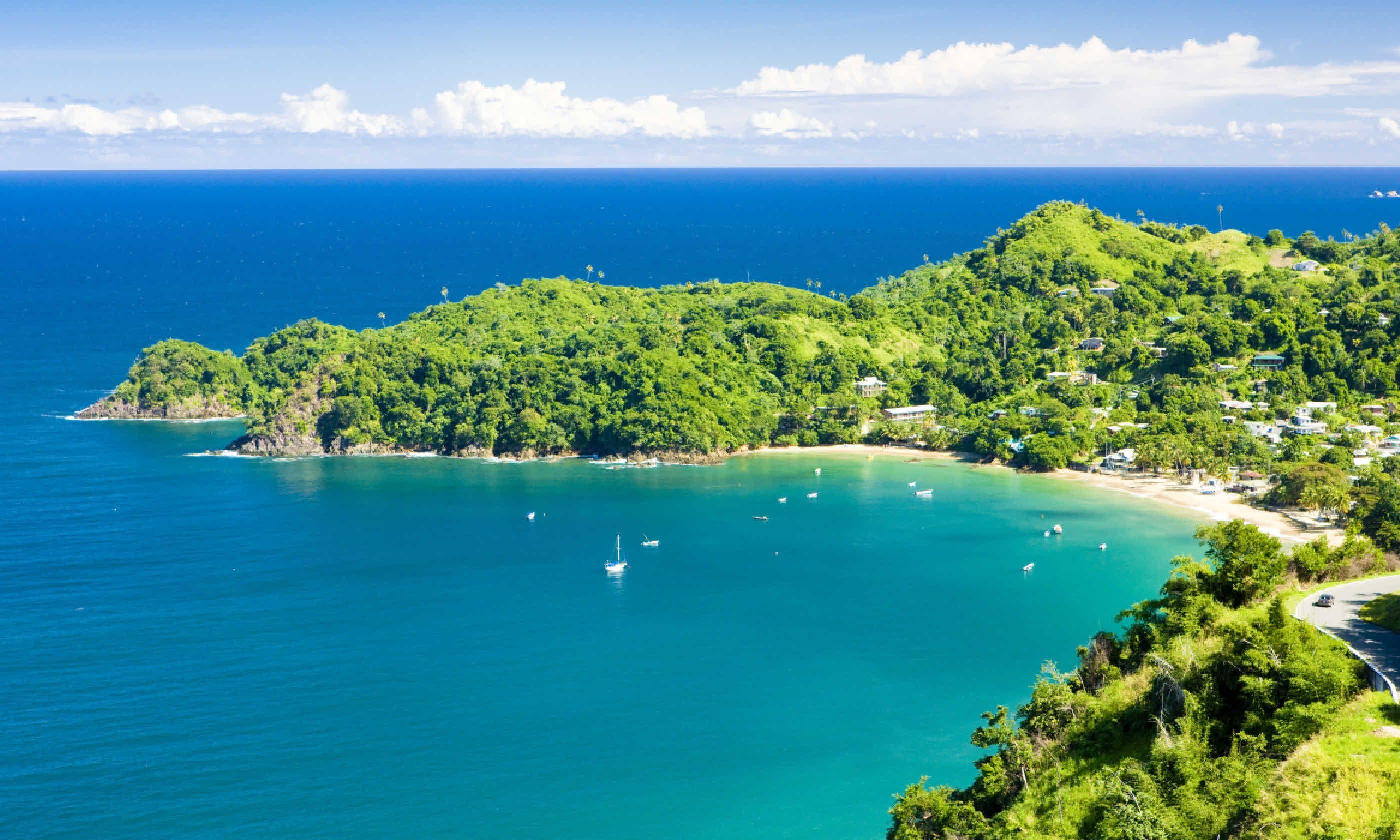 Castara Bay (Shutterstock)