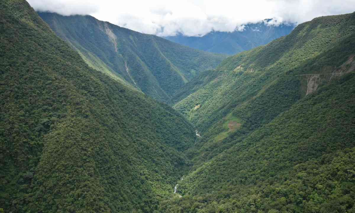 Yungas region of Bolivia (Shutterstock)