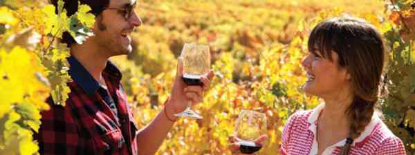 Travellers enjoy wine tasting in Colchagua (Turismo Chile)