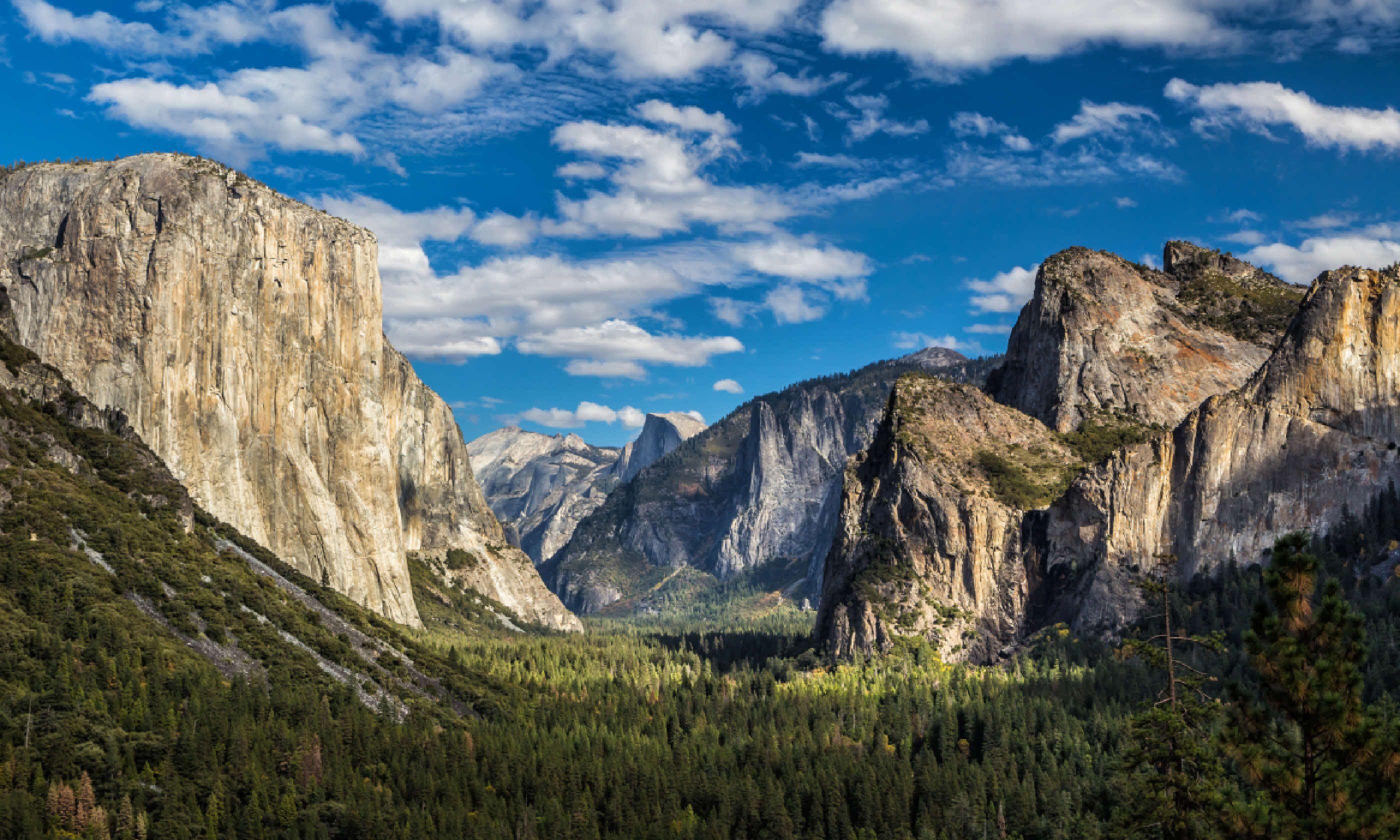 Yosemite National Park Valley (Shutterstock)