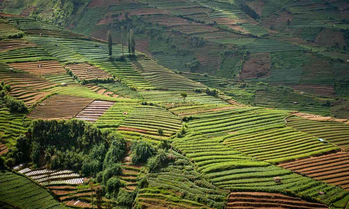 Dieng Plateau, Indonesia (Shutterstock.com)
